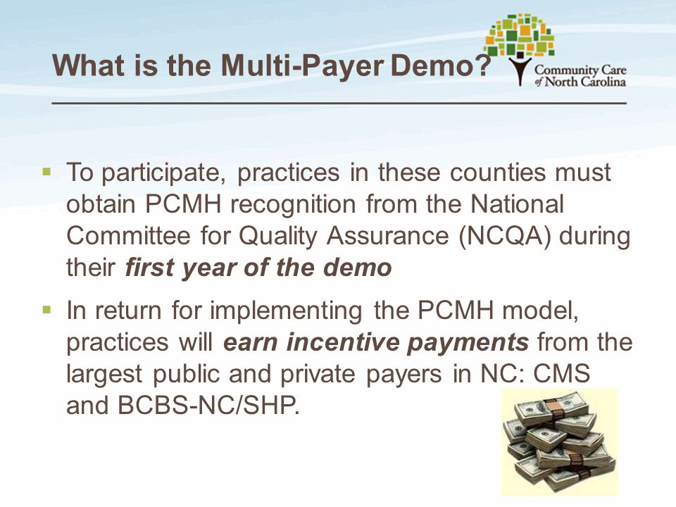 What is the Multi-Payer Demo