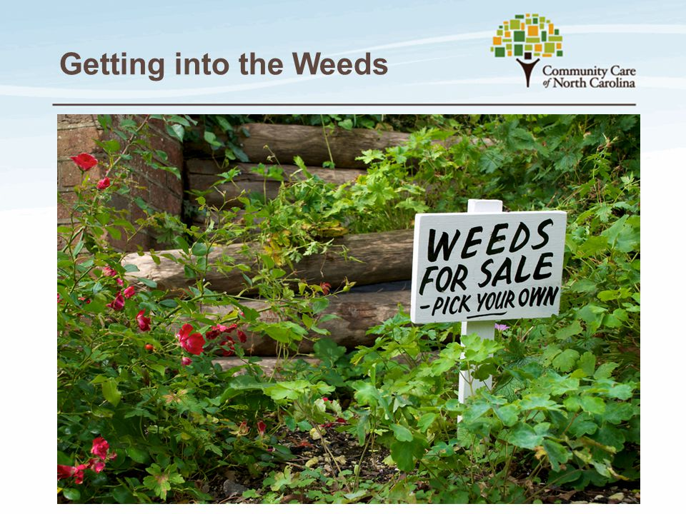 Getting into the Weeds