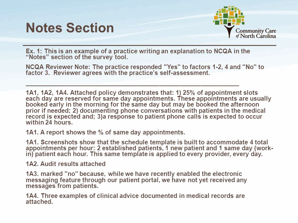 Notes Section