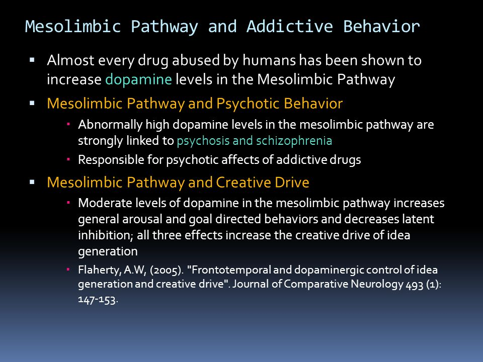 Mesolimbic Pathway and Addictive Behavior