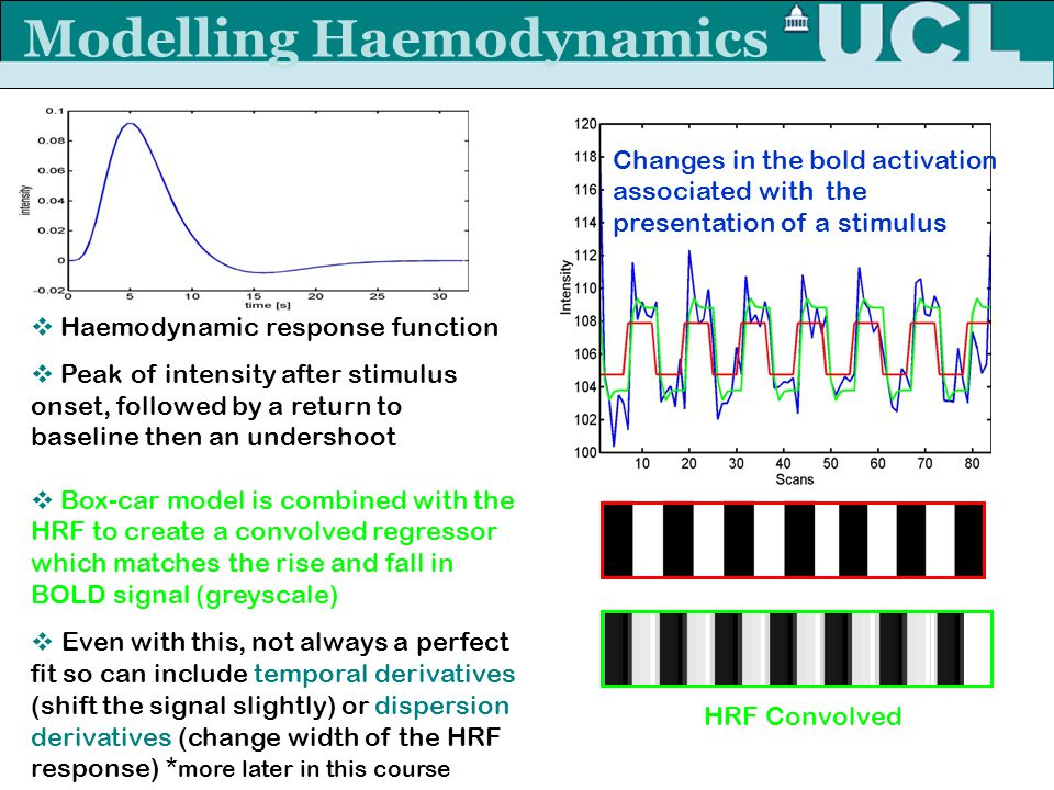 Modelling Haemodynamics