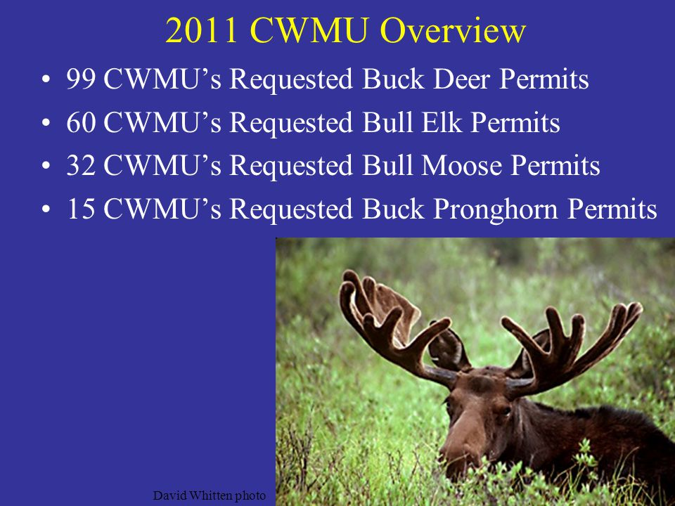 2011 CWMU Overview 99 CWMU's Requested Buck Deer Permits