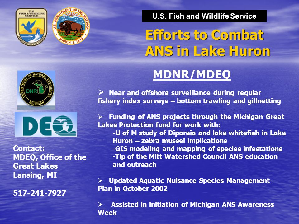 Efforts to Combat ANS in Lake Huron