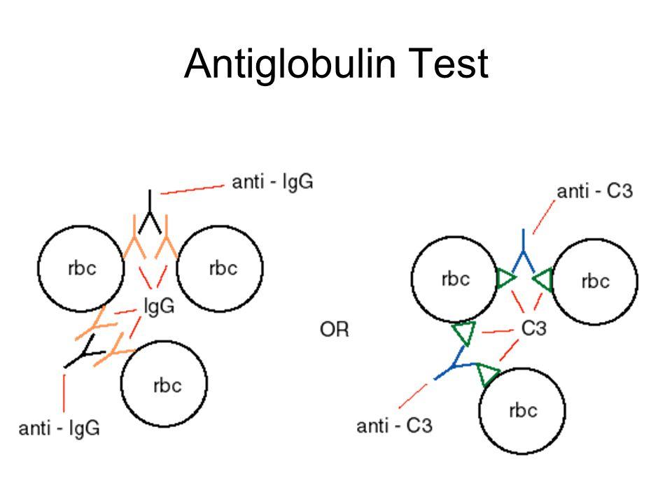 Antiglobulin Test