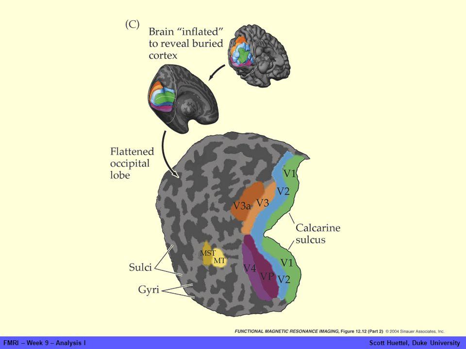 fmri-fig-12-12-2.jpg FMRI – Week 9 – Analysis I Scott Huettel, Duke University.