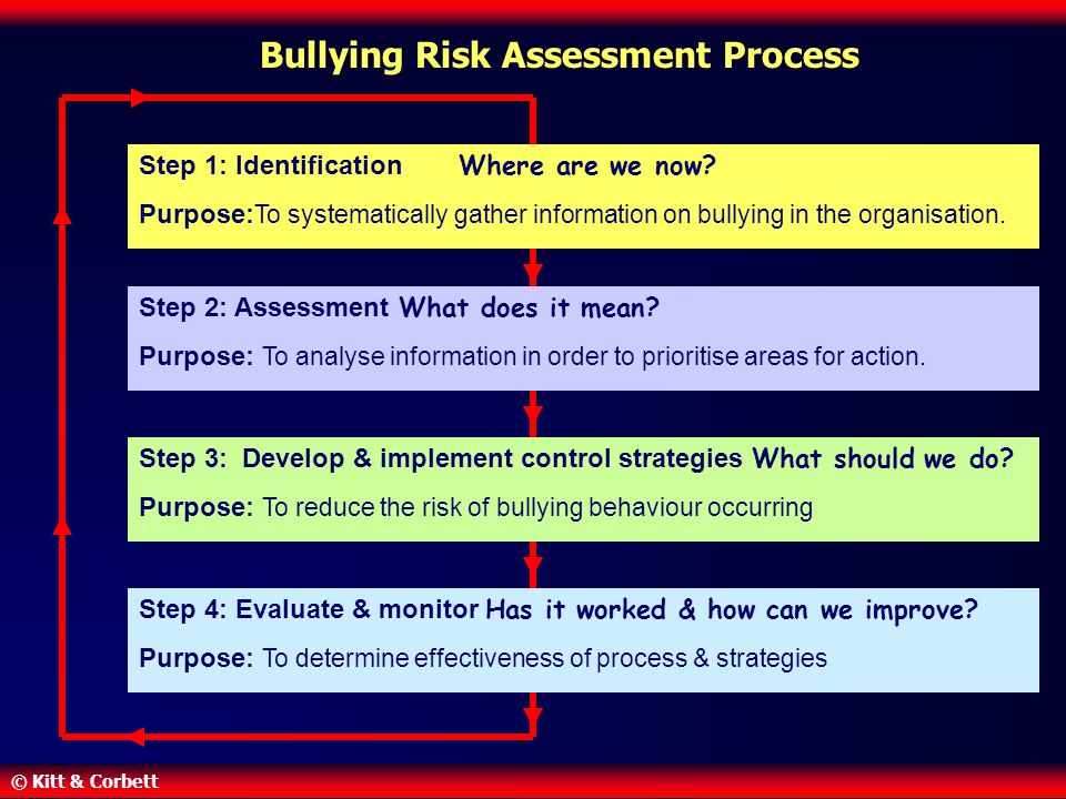 Bullying Risk Assessment Process