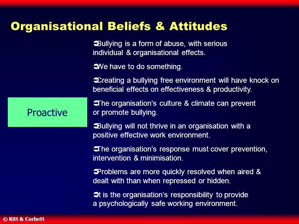 Organisational Beliefs & Attitudes