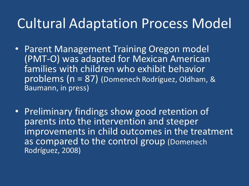 Cultural Adaptation Process Model