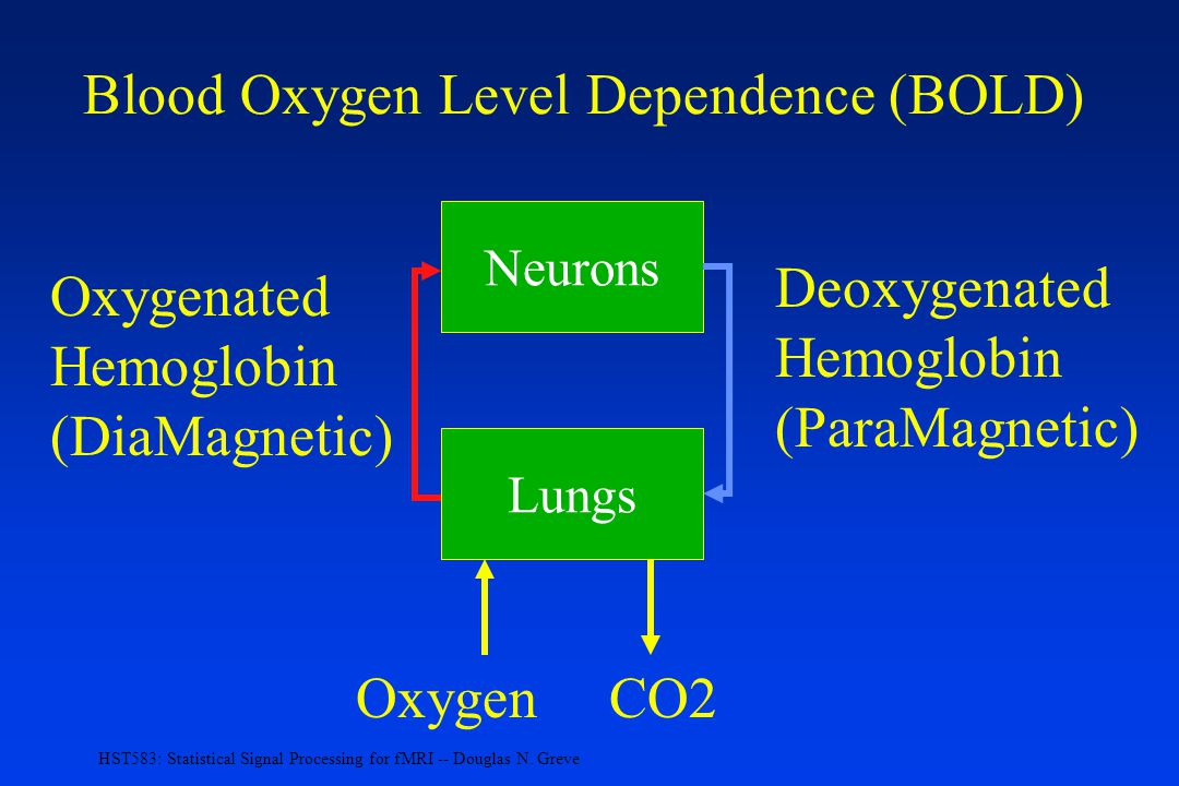 Blood Oxygen Level Dependence (BOLD)