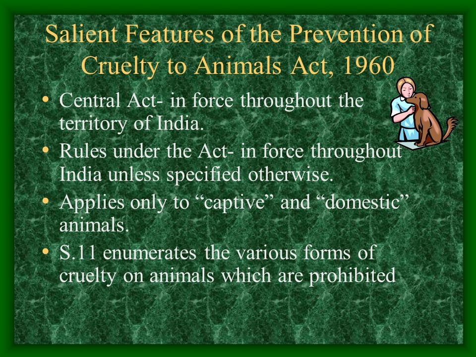 Salient Features of the Prevention of Cruelty to Animals Act, 1960