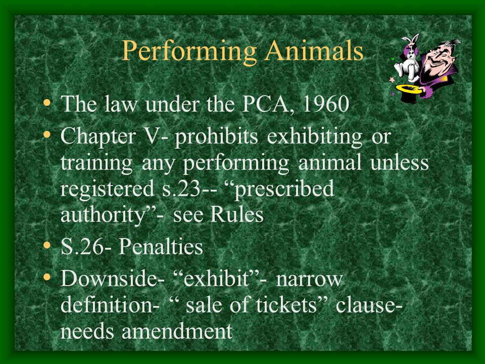 Performing Animals The law under the PCA, 1960