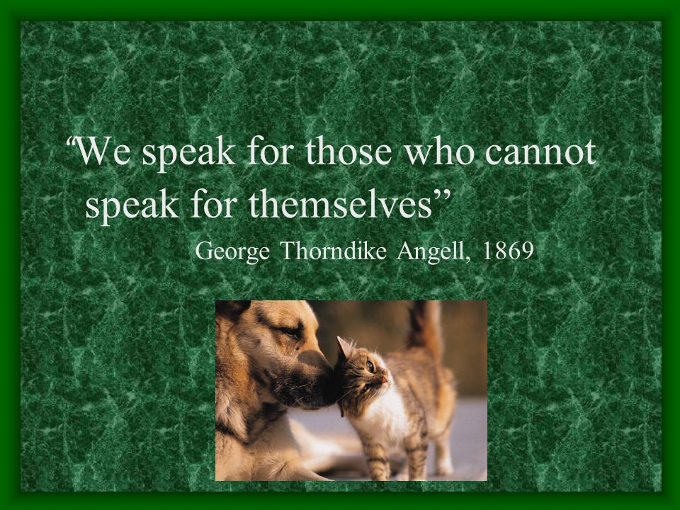 We speak for those who cannot speak for themselves
