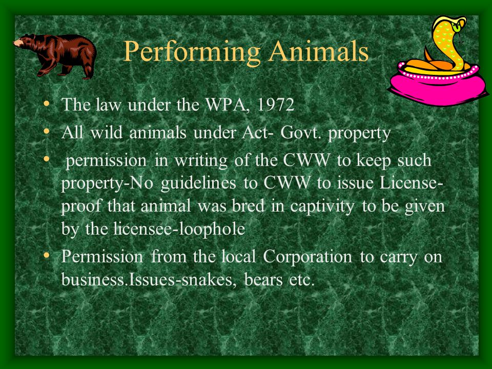 Performing Animals The law under the WPA, 1972