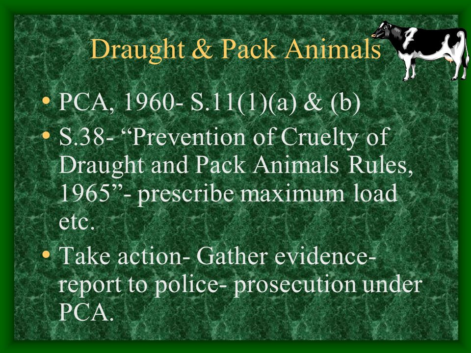 Draught & Pack Animals PCA, 1960- S.11(1)(a) & (b)