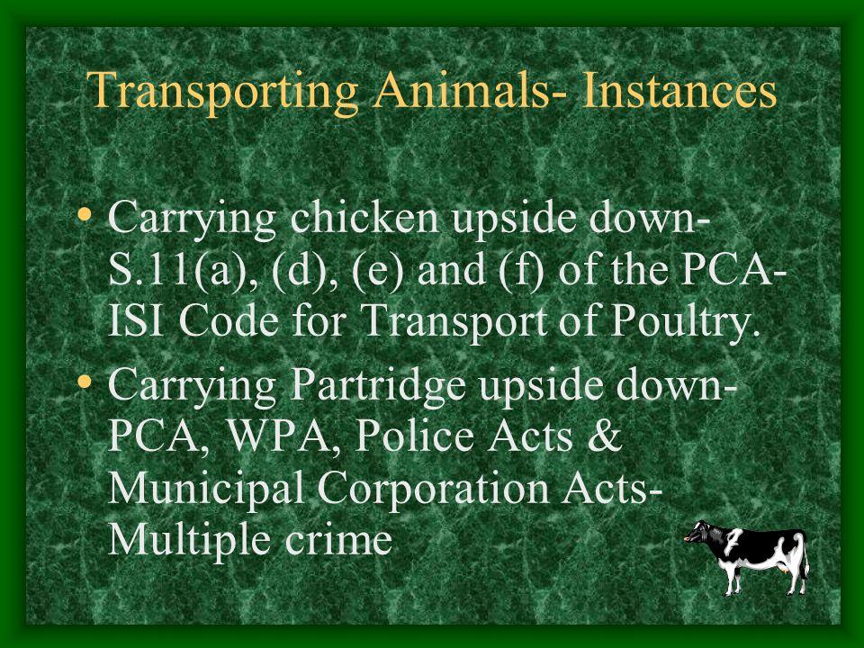 Transporting Animals- Instances