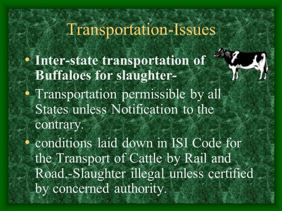 Transportation-Issues