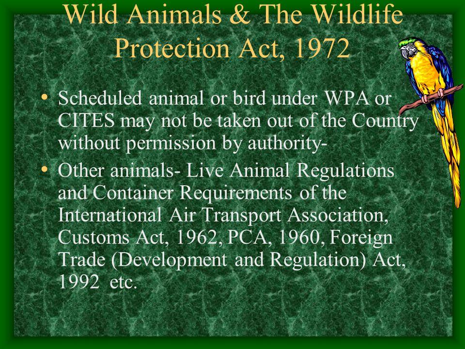 Wild Animals & The Wildlife Protection Act, 1972