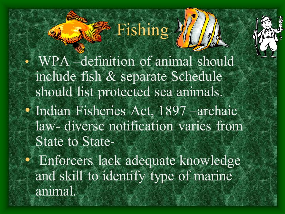 Fishing WPA –definition of animal should include fish & separate Schedule should list protected sea animals.
