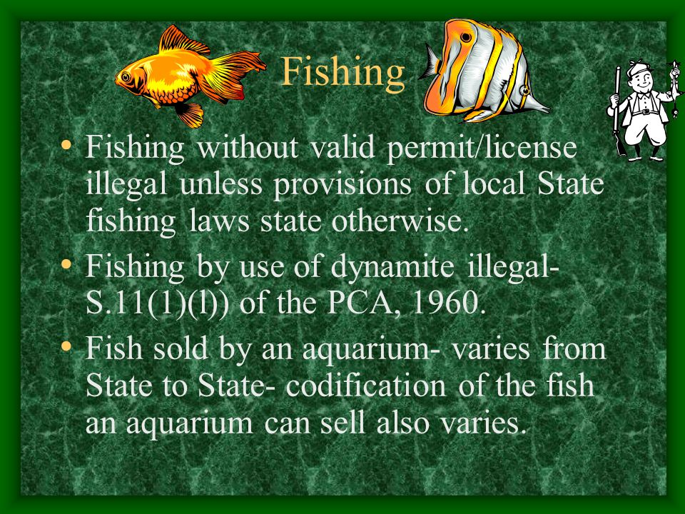 Fishing Fishing without valid permit/license illegal unless provisions of local State fishing laws state otherwise.