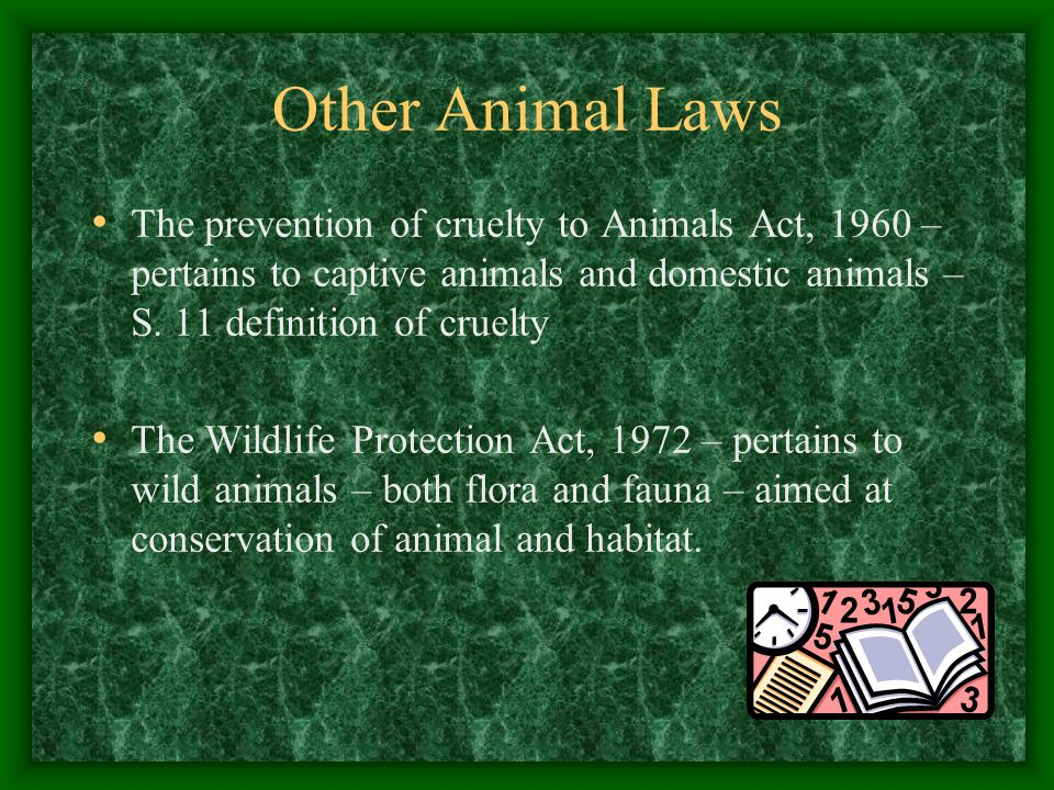 Other Animal Laws The prevention of cruelty to Animals Act, 1960 – pertains to captive animals and domestic animals – S. 11 definition of cruelty.