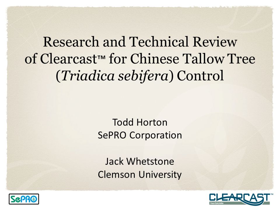 Research and Technical Review