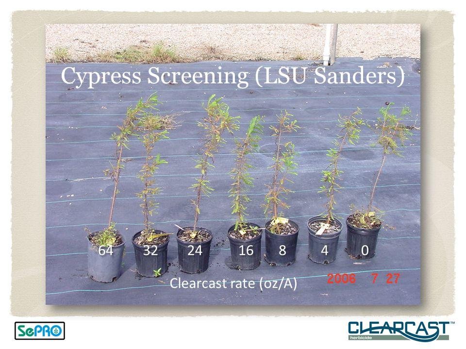 Cypress Screening (LSU Sanders)