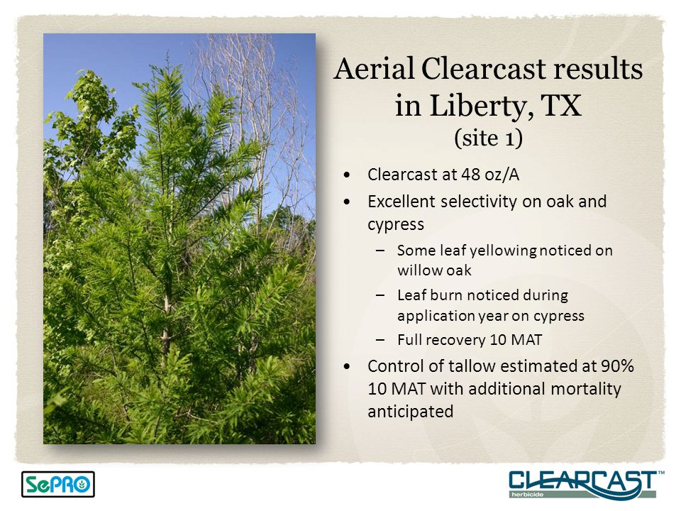 Aerial Clearcast results in Liberty, TX (site 1)