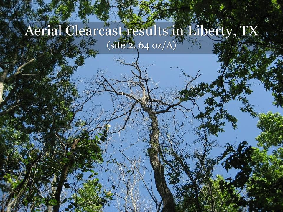 Aerial Clearcast results in Liberty, TX (site 2, 64 oz/A)