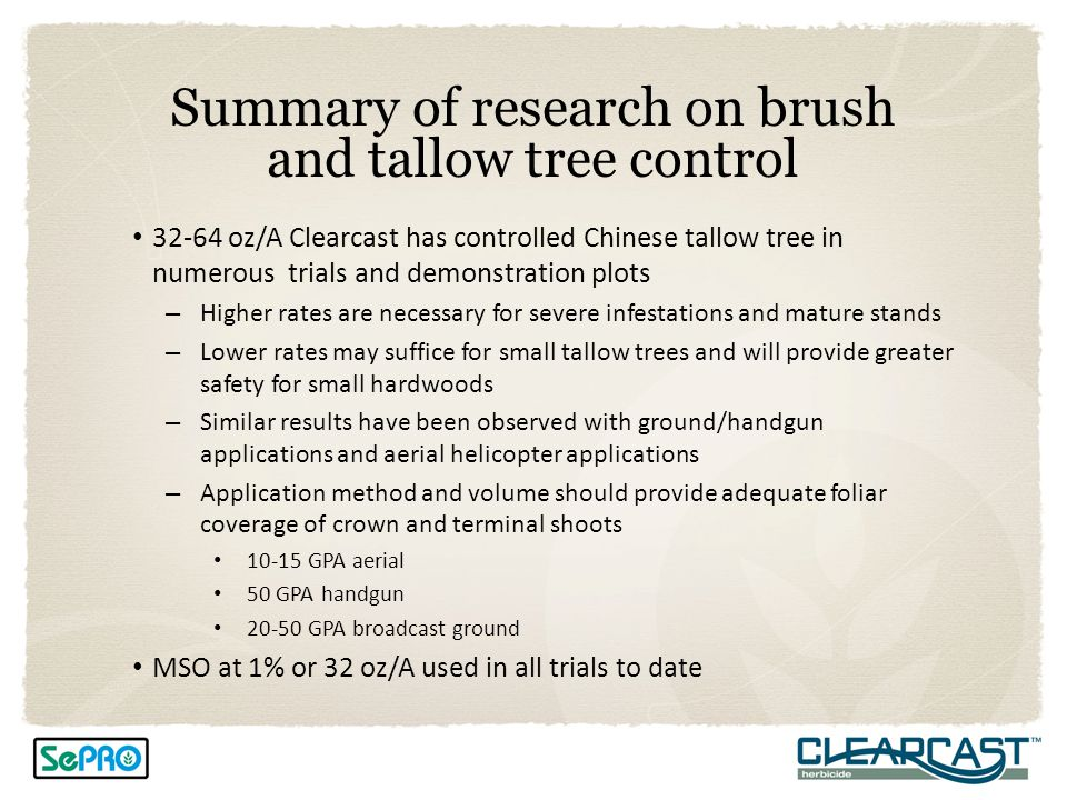 Summary of research on brush and tallow tree control