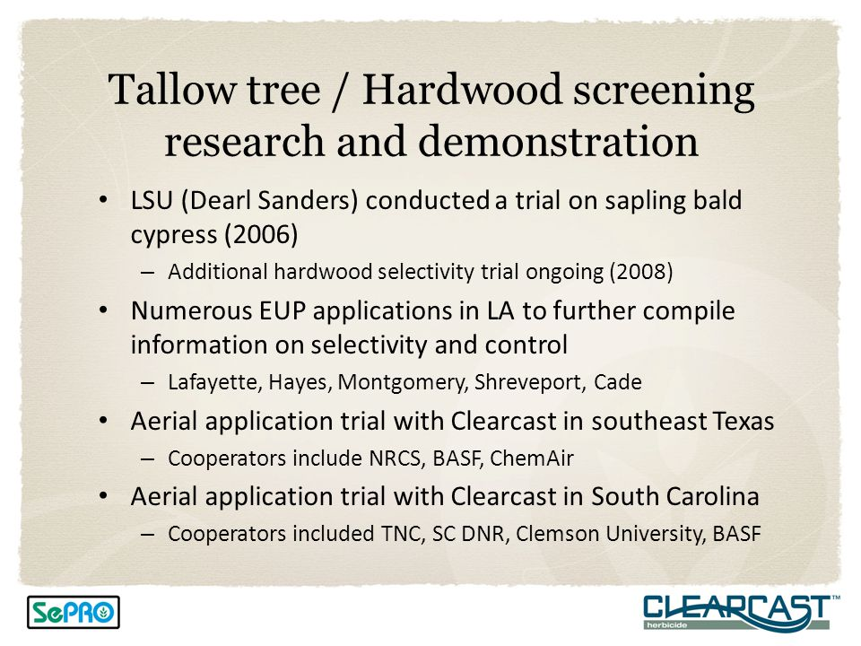 Tallow tree / Hardwood screening research and demonstration