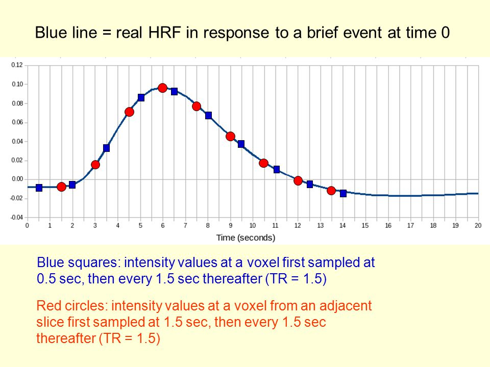 Blue line = real HRF in response to a brief event at time 0