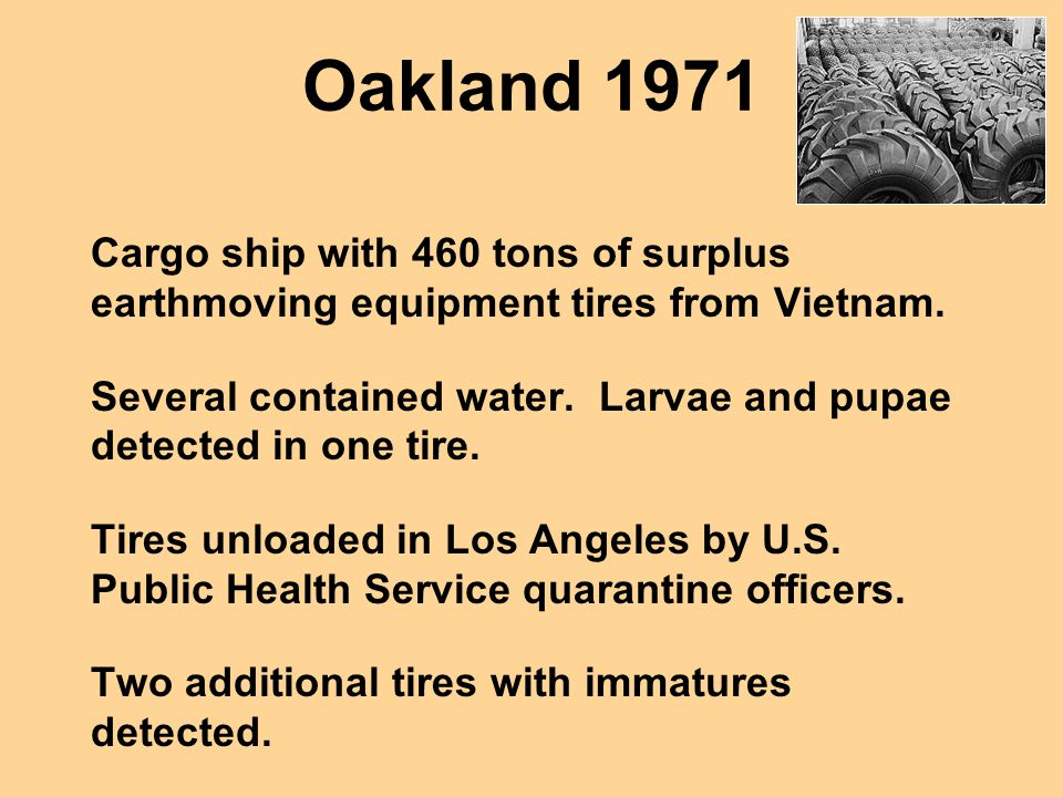 Oakland 1971 Cargo ship with 460 tons of surplus earthmoving equipment tires from Vietnam.