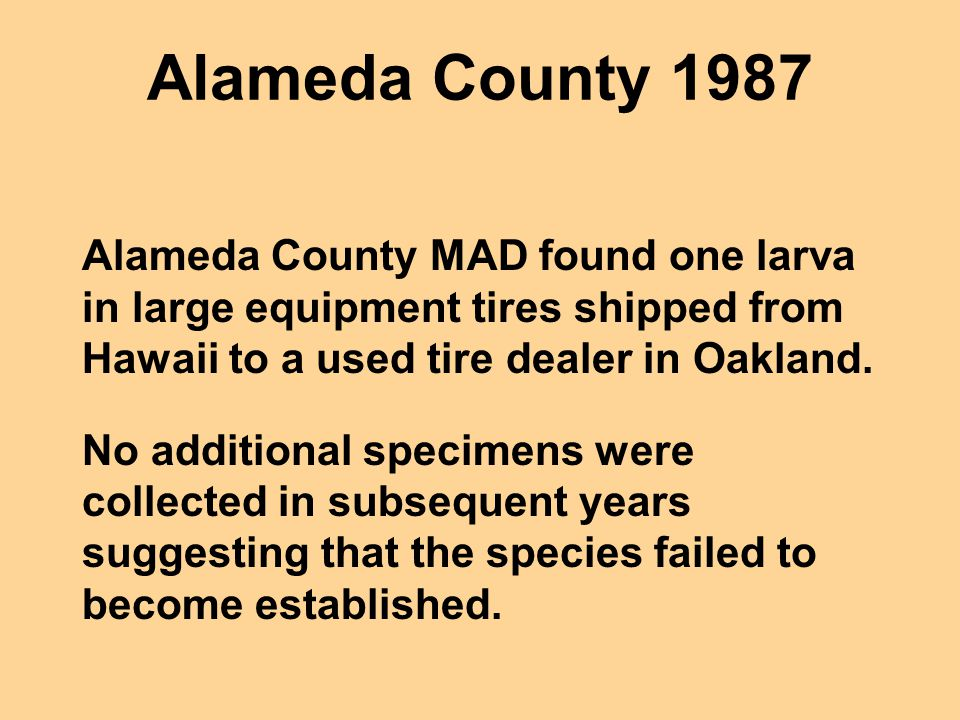 Alameda County 1987 Alameda County MAD found one larva in large equipment tires shipped from Hawaii to a used tire dealer in Oakland.