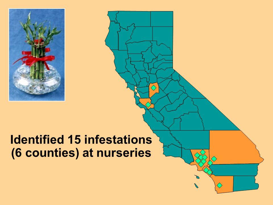 Identified 15 infestations (6 counties) at nurseries