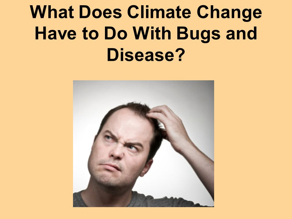 What Does Climate Change Have to Do With Bugs and Disease