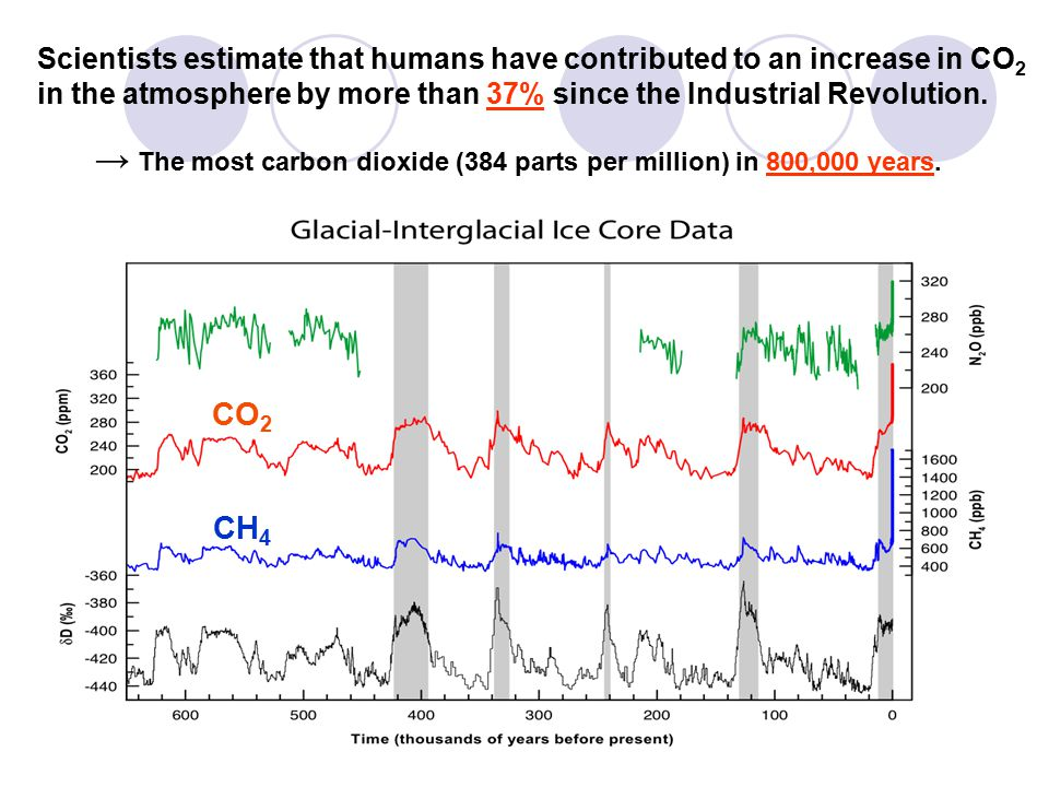 Scientists estimate that humans have contributed to an increase in CO2