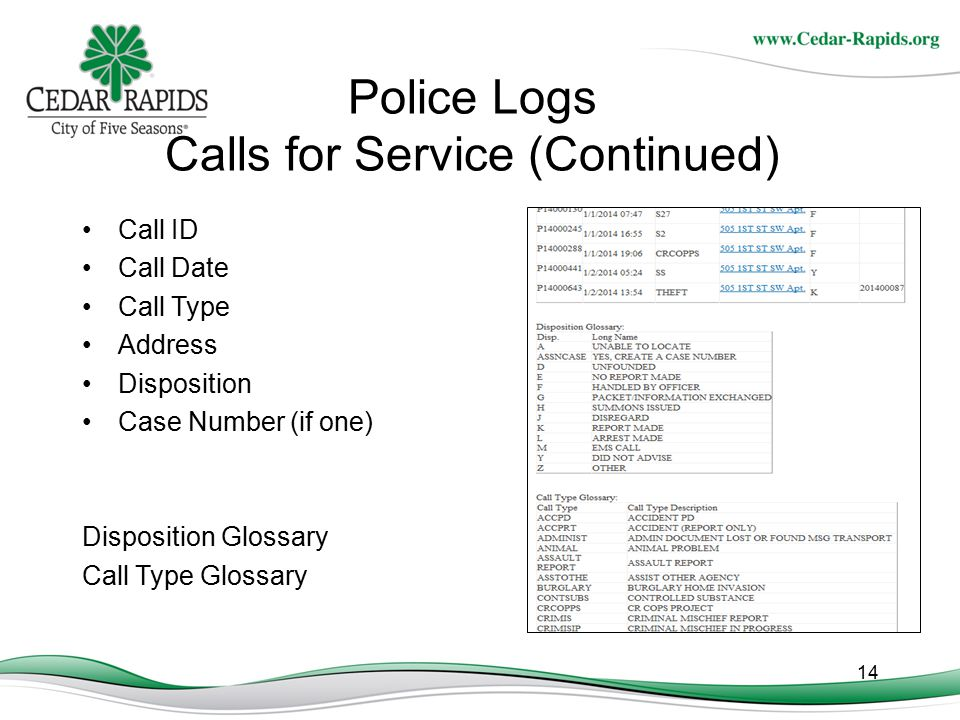 Police Logs Calls for Service (Continued)