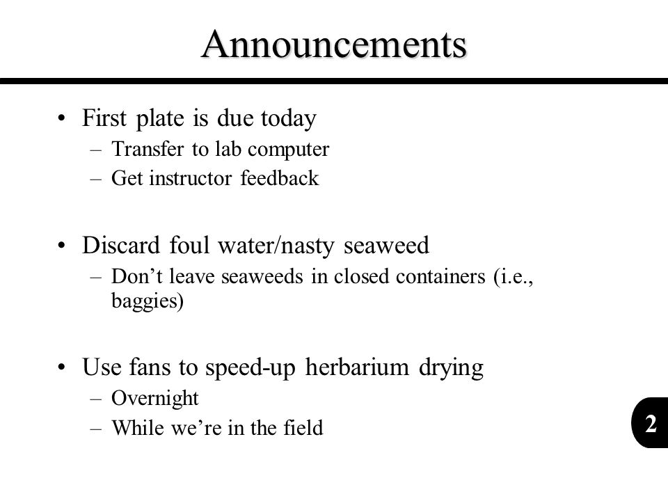 Announcements First plate is due today