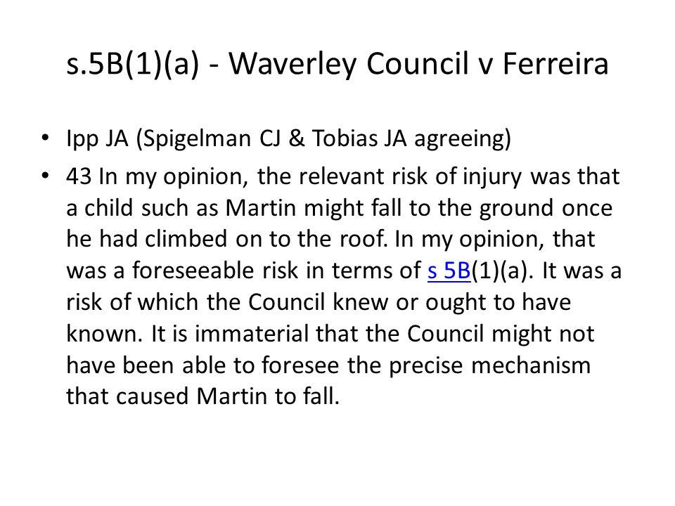 s.5B(1)(a) - Waverley Council v Ferreira