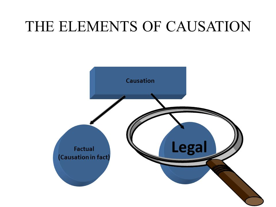 THE ELEMENTS OF CAUSATION