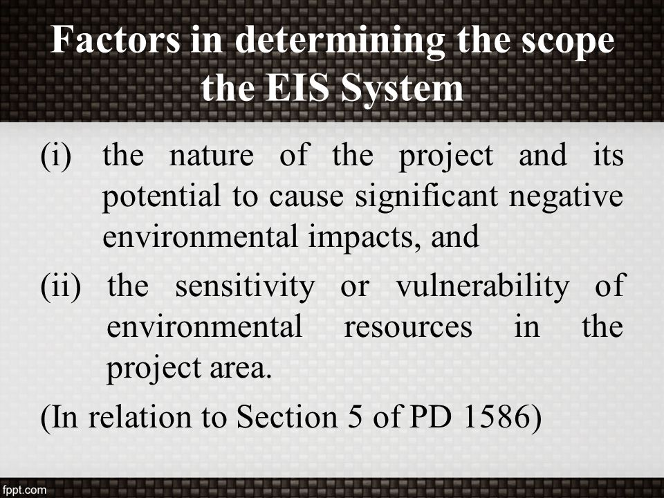 Factors in determining the scope the EIS System