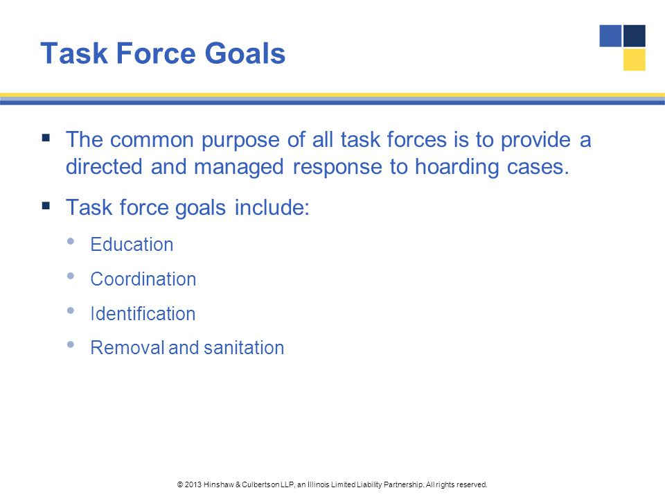 Task Force Goals The common purpose of all task forces is to provide a directed and managed response to hoarding cases.