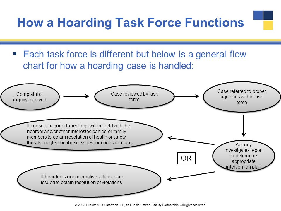 How a Hoarding Task Force Functions