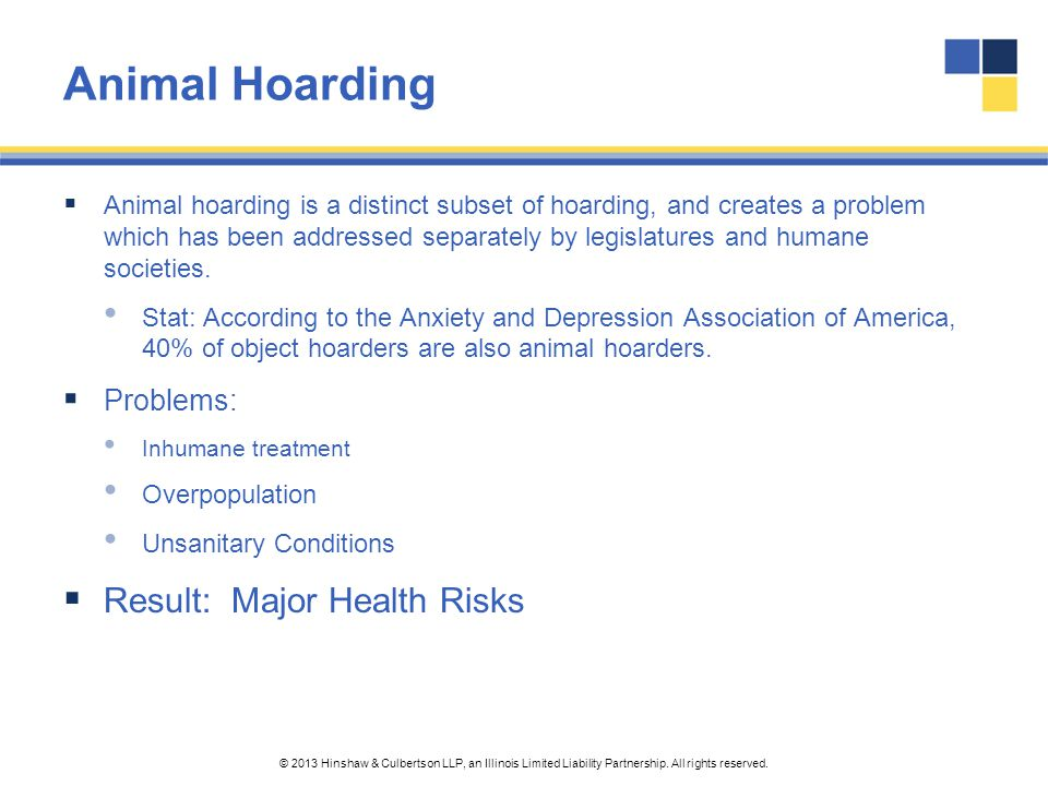 Animal Hoarding Result: Major Health Risks Problems: