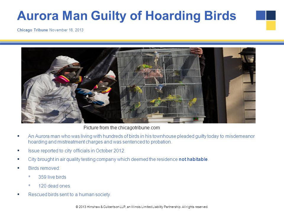 Aurora Man Guilty of Hoarding Birds Chicago Tribune November 18, 2013