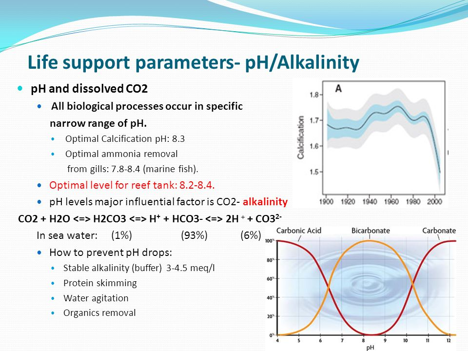 Life support parameters- pH/Alkalinity