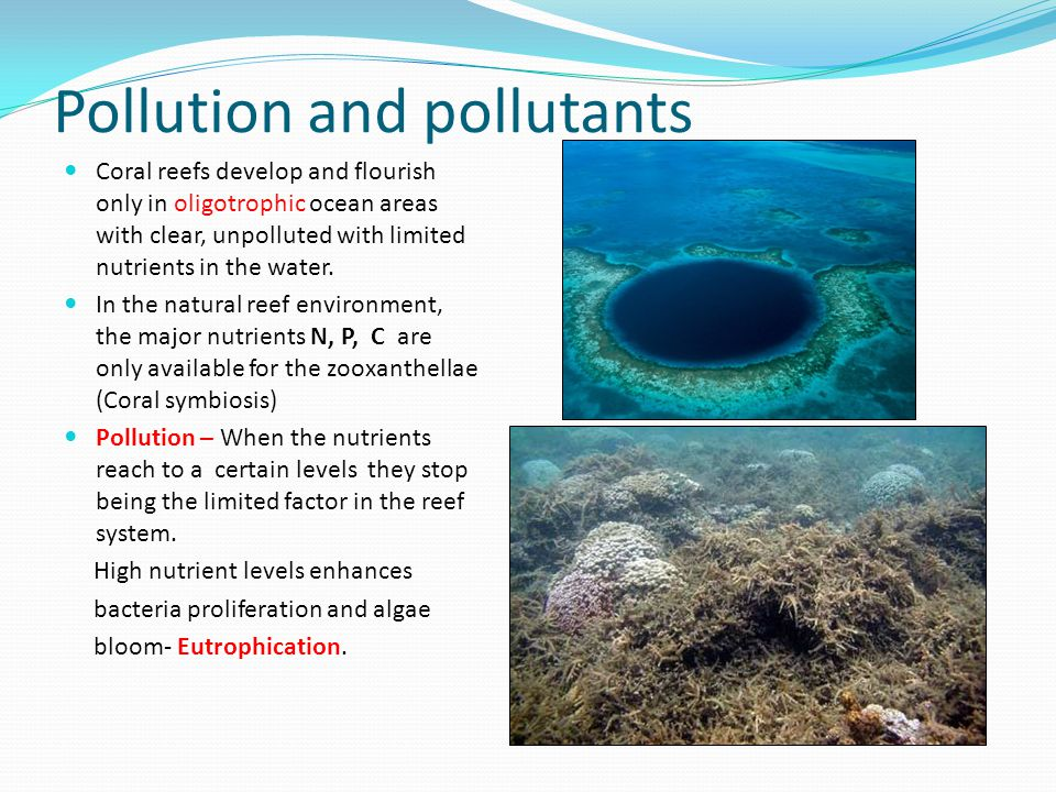 Pollution and pollutants
