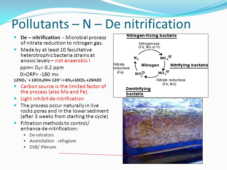 Pollutants – N – De nitrification