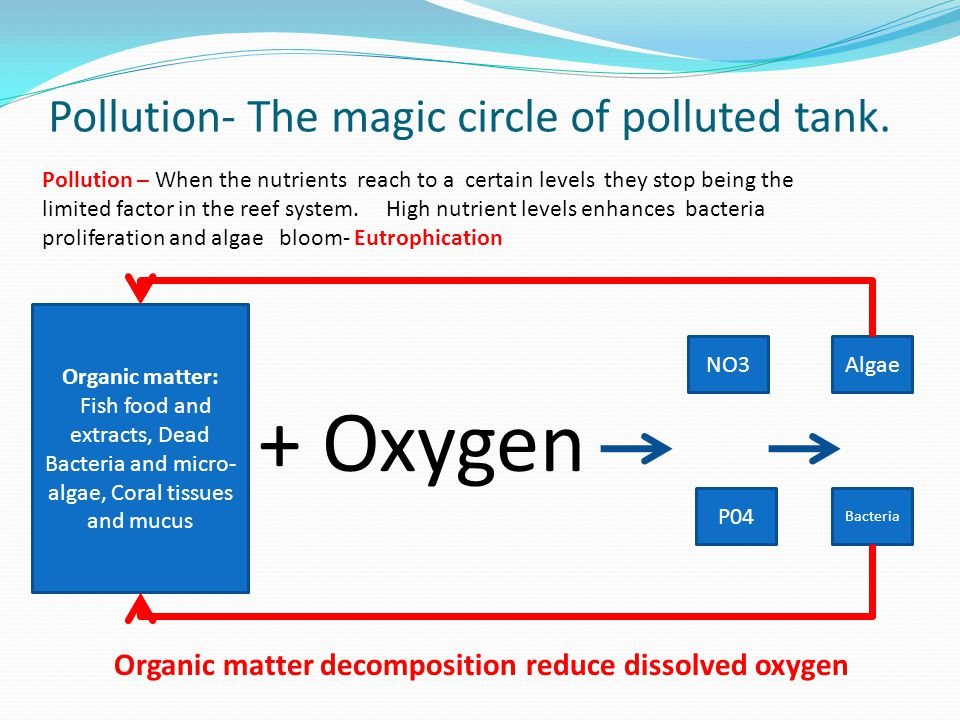 Pollution- The magic circle of polluted tank.