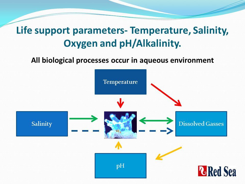All biological processes occur in aqueous environment